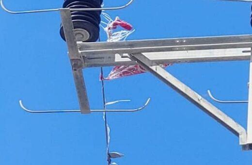 הבלון הסורר שפגע בקו המתח הראשי וגרם לניתוק חשמל למשך שעות ארוכות